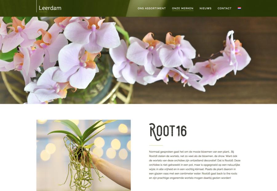 Marketingondersteuning Pull Position voor Leerdam Orchid